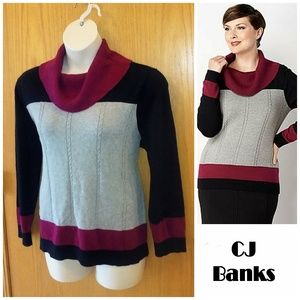 CJ BANKS Black/Gray/Maroon Cotton Cowl Sweater 1X